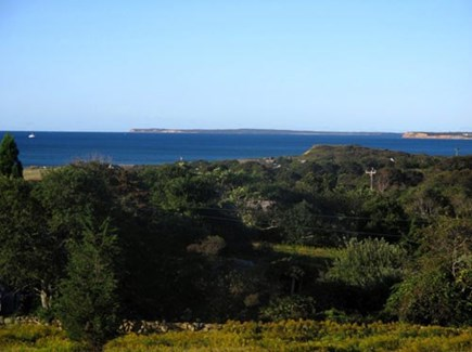 Chilmark Martha's Vineyard vacation rental - Standing on the back porch, gazing at the ocean