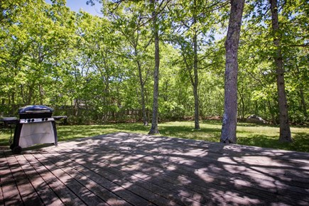 Edgartown Martha's Vineyard vacation rental - The yard is secluded with plenty of space to relax and play