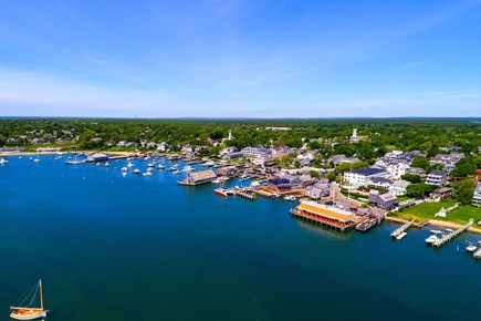 Edgartown Martha's Vineyard vacation rental - This isolated island is ideal for nature lovers