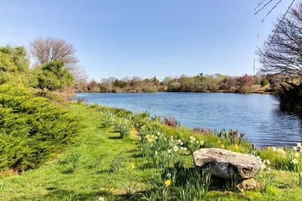 West Tisbury Martha's Vineyard vacation rental - This home is so peacefully situated on Looks Pond