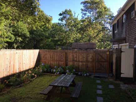 Edgartown, Ocean Heights Martha's Vineyard vacation rental - Private back yard with outdoor shower