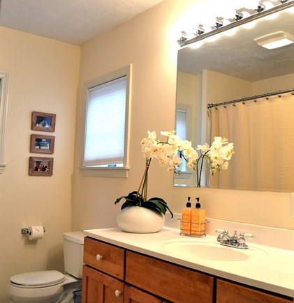 Oak Bluffs Martha's Vineyard vacation rental - Another Full Bathroom