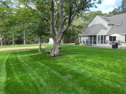 Oak Bluffs Martha's Vineyard vacation rental - Backyard View