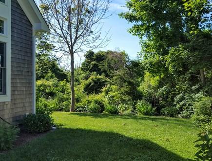 Edgartown Martha's Vineyard vacation rental - Yard