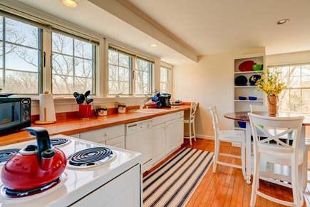 Edgartown Martha's Vineyard vacation rental - Cook whatever you can imagine