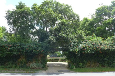 Vineyard Haven Martha's Vineyard vacation rental - Beautiful Stone wall arch entrance...