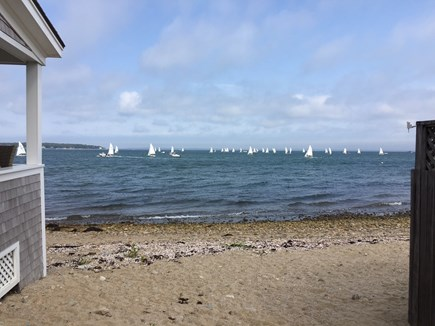 Oak Bluffs &Vineyard Haven Martha's Vineyard vacation rental - Sailing Regatta in Vineyard Haven Harbor