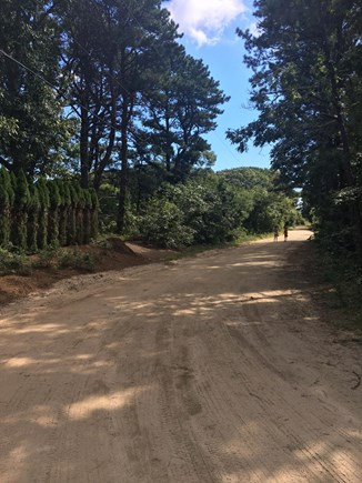 Edgartown Martha's Vineyard vacation rental - Classic Vineyard neighborhood with a well-kept dirt road to pond