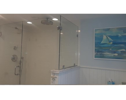 Edgartown Village Martha's Vineyard vacation rental - Glass shower with rain head