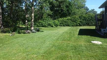 Edgartown Village Martha's Vineyard vacation rental - Large landscaped yard with outdoor shower