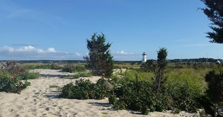 Edgartown Village Martha's Vineyard vacation rental - Edgartown Lighthouse and Beach within a mile