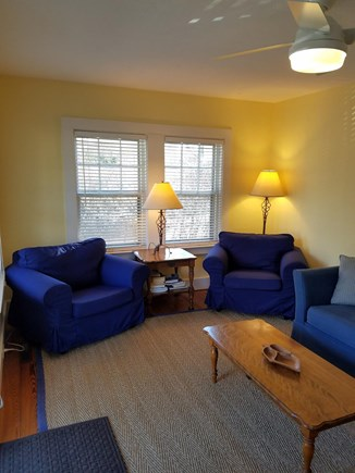 Edgartown Martha's Vineyard vacation rental - Living Room with pullout sofa
