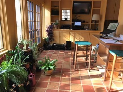West Tisbury Martha's Vineyard vacation rental - Ground floor, home to houseplants and office during winter.
