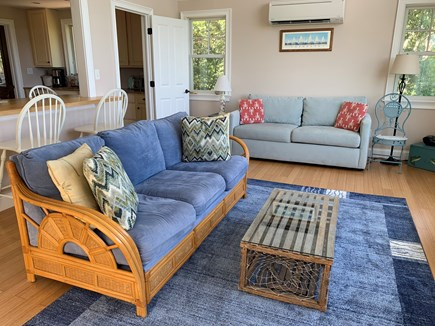 Aquinnah Martha's Vineyard vacation rental - Wonderful living room with vaulted ceiling, couch and sleep couch