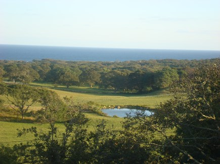 Chilmark Martha's Vineyard vacation rental - The view from our deck.
