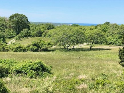 Chilmark Martha's Vineyard vacation rental - Field and water view from the deck