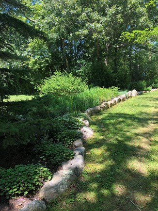 Lambert's Cove, West Tisbury Martha's Vineyard vacation rental - Absolutely beautiful Peaceful gardens