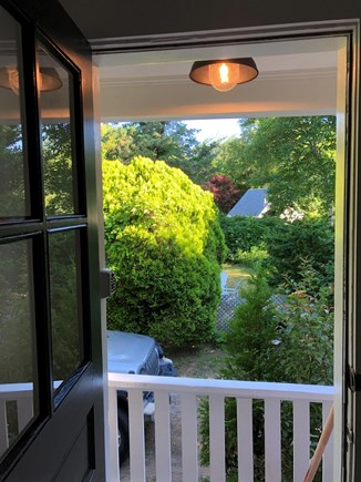 Edgartown Martha's Vineyard vacation rental - Lush yard