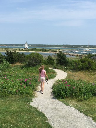 Edgartown Martha's Vineyard vacation rental - Lighthouse Beach Path