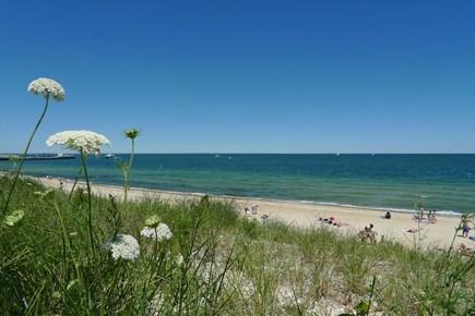 Oak Bluffs Martha's Vineyard vacation rental - Walk to Inkwell beach