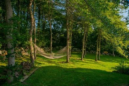 Aquinnah Martha's Vineyard vacation rental - Hammock and Beach Tree Grove