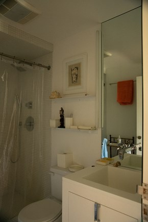 Aquinnah Martha's Vineyard vacation rental - Main house ground floor bathroom