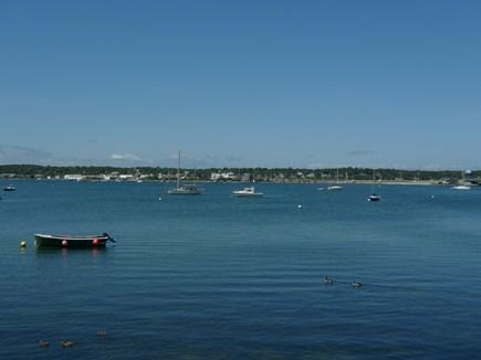 Oak Bluffs Martha's Vineyard vacation rental - Lagoon Pond for canoeing, kayaking, water skiing, paddle boarding