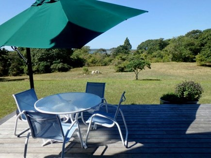 Chilmark Martha's Vineyard vacation rental - Water views of Elizabeth Islands.  Large gas grill nearby.