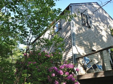 West Tisbury Martha's Vineyard vacation rental - Our beautiful cottage
