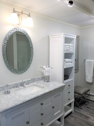 Edgartown Martha's Vineyard vacation rental - First Floor Full Bath with Shower