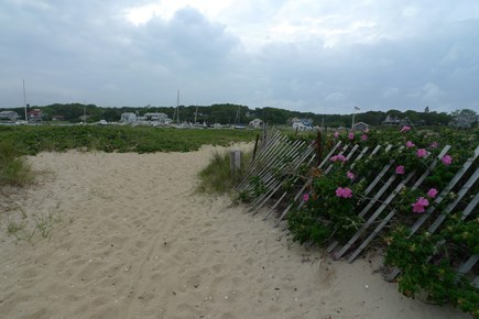 Oak Bluffs Martha's Vineyard vacation rental - Just steps away from Jetty Beach