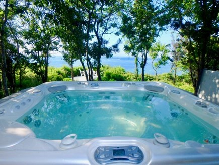 West Tisbury Martha's Vineyard vacation rental - Hot tub, outdoor shower and dining table overlooking the Sound