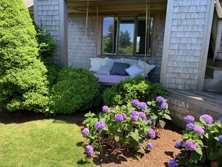 Katama - Edgartown, Katama  Martha's Vineyard vacation rental - Outdoor swing bed
