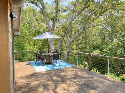 West Tisbury Martha's Vineyard vacation rental - Surrounded by towering oaks, high elevation, many birds...