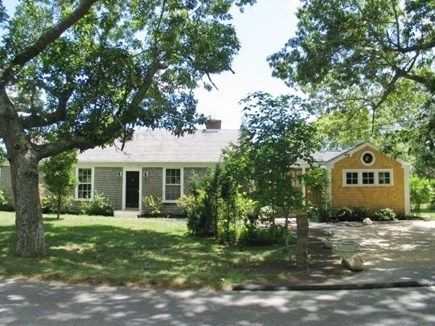 West Tisbury Martha's Vineyard vacation rental - Trees and woods surrounding the house