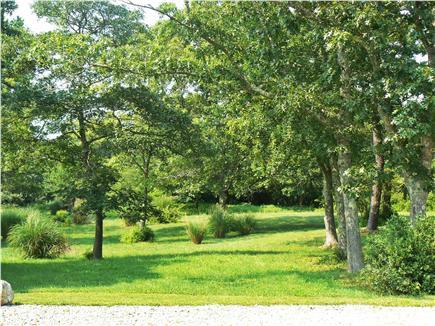 Chilmark Martha's Vineyard vacation rental - Front yard