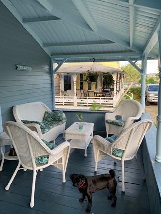 Oak Bluffs Martha's Vineyard vacation rental - Pug not included.