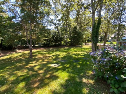 Oak Bluffs Martha's Vineyard vacation rental - Yard space facing the deck is a shady sanctuary for your retreat.