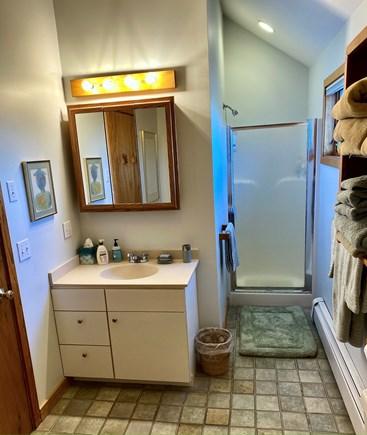 West Tisbury Martha's Vineyard vacation rental - Shower and vanity in Grand Bedroom en-suite bathroom