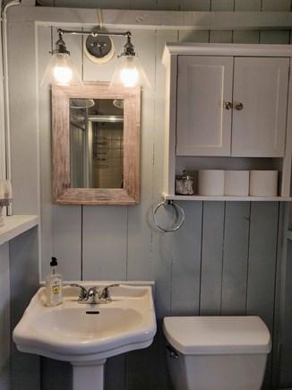 Oak Bluffs Martha's Vineyard vacation rental - Updated main floor bathroom with stand-up shower