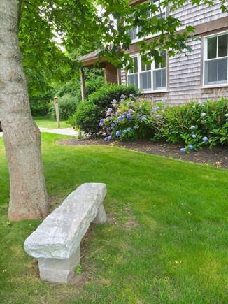 Vineyard Haven Martha's Vineyard vacation rental - Bench in garden