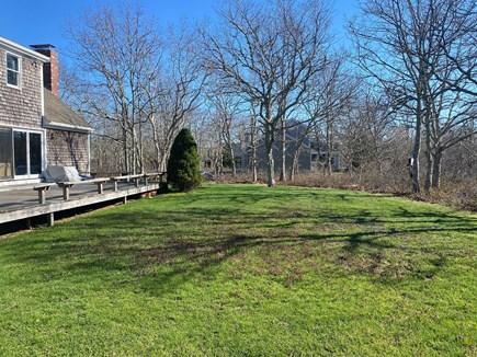 West Tisbury Martha's Vineyard vacation rental - Backyard