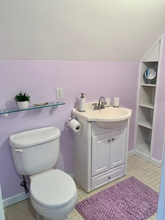 Oak Bluffs Martha's Vineyard vacation rental - Private bathroom with stall shower (off of the twin bedroom)