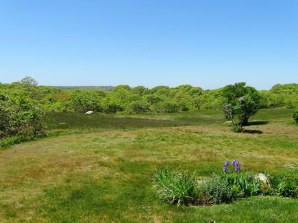Chilmark Martha's Vineyard vacation rental - View of backyard nature and gardens