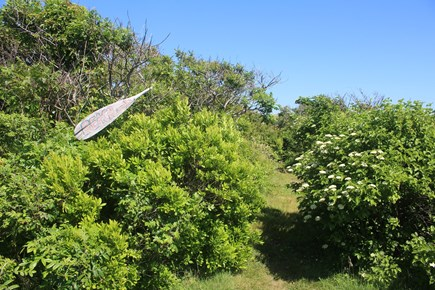 Chilmark - Lucy Vincent Beach Martha's Vineyard vacation rental - Path to beach