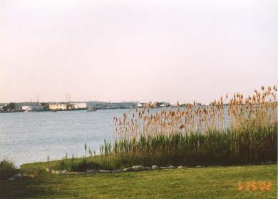 Vineyard Haven Martha's Vineyard vacation rental - View from Deck across the Lagoon