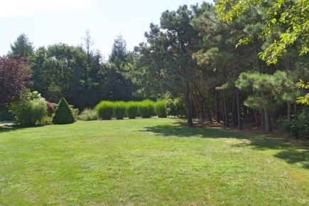 Katama - Edgartown, Edgartown Martha's Vineyard vacation rental - Beautiful yard