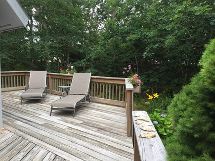 Katama - Edgartown, Martha's Vineyard, Edgartown Martha's Vineyard vacation rental - Private Relaxing Deck Area with Flower & Herb Boxes