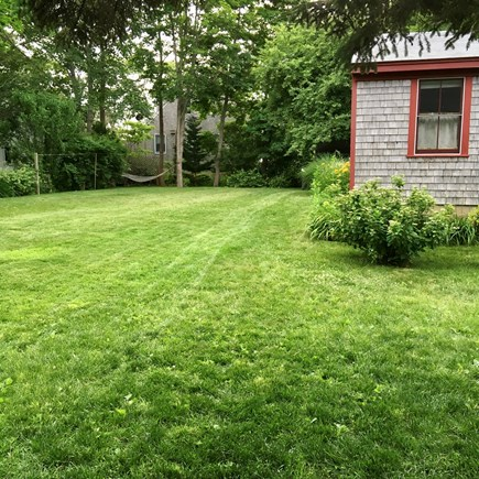 Oak Bluffs Martha's Vineyard vacation rental - Yard with hammock