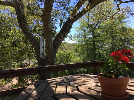 West Tisbury, MA Martha's Vineyard vacation rental - Shaded octagonal picnic table on our deck!  Gather and enjoy!